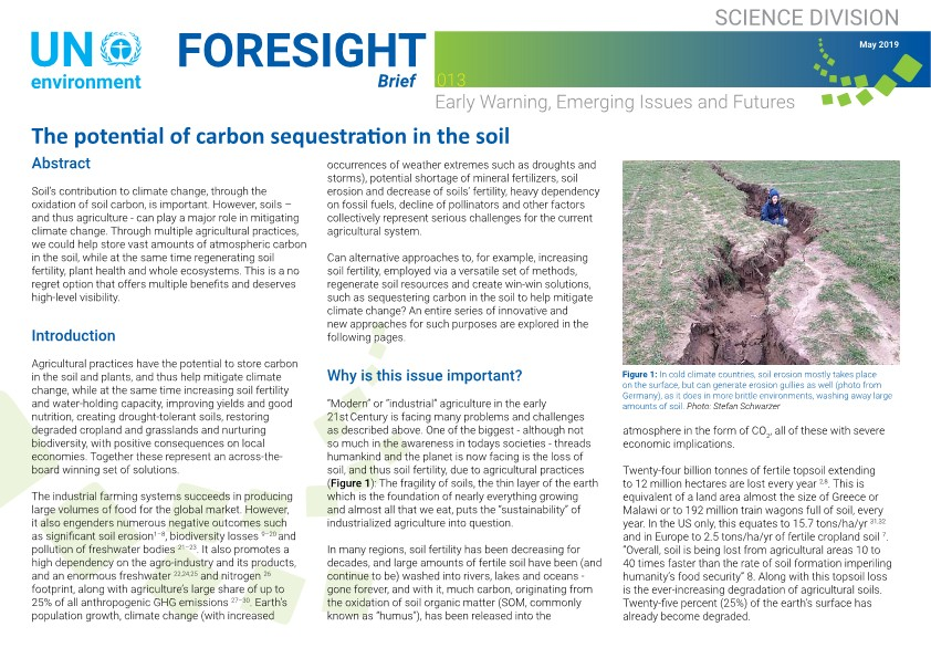 Launch of a new foresight brief on Carbon sequestration